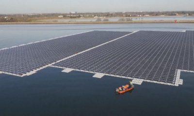 enerjisa-solar depolama-destek fonu