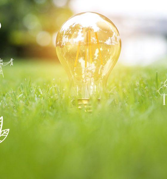 yenilenebilir enerji sertifikası- enerji-orijin-garanti